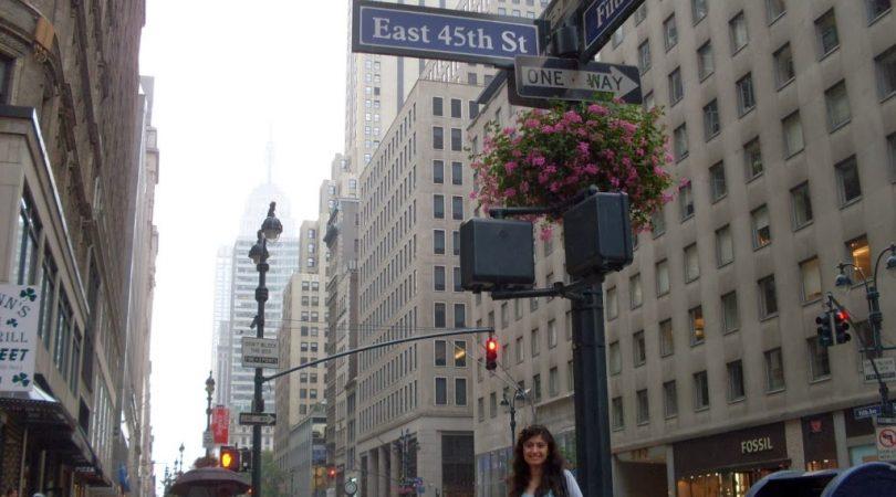 13-fifth-avenue-newyork-2010.JPG