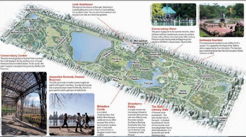 23-newyork-central-park-haritas%C4%B1na-bakis.jpg