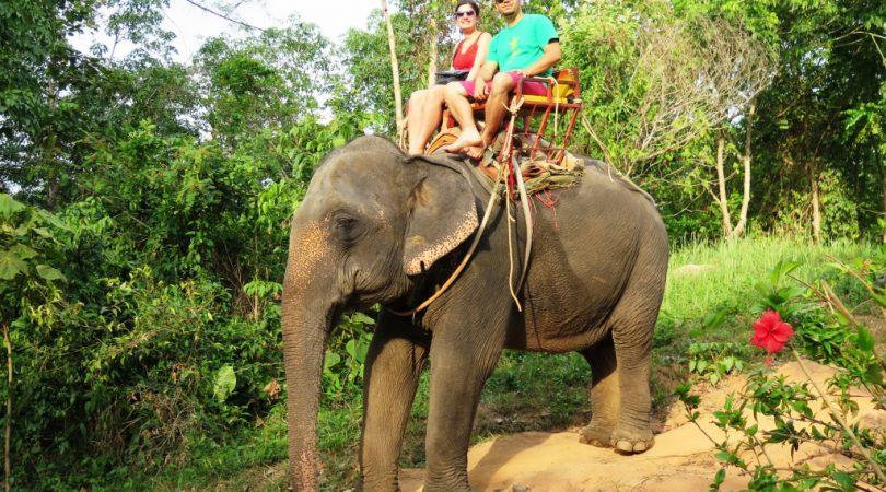 elephant-safari-(3).JPG