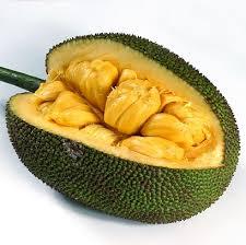 jack_fruit.jpg