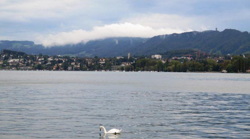 lake_zurich-(2).JPG