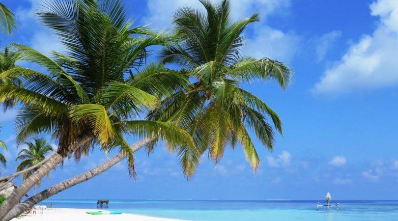 maldives (22)