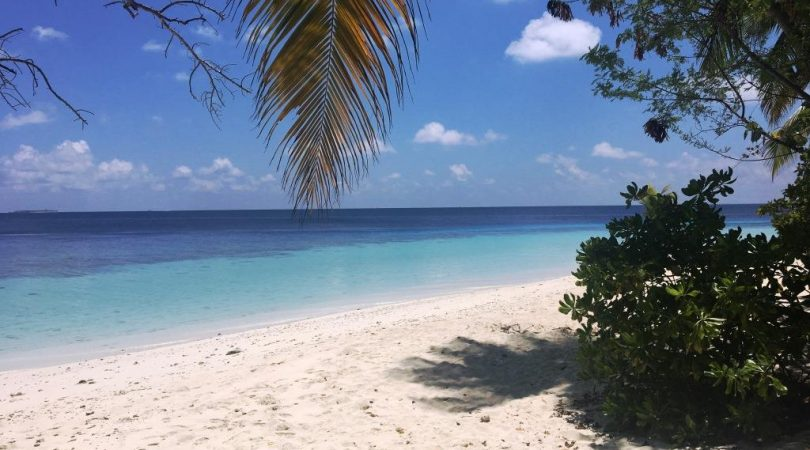 maldives (35)