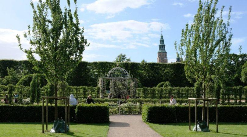 king'S_garden (3)